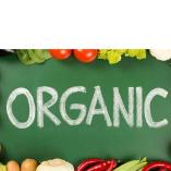 Perfect Organic Food