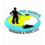Big Daves Termite & Pest Control