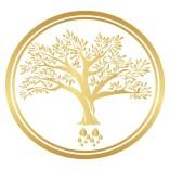 Arganöl D&A Moroccan Gold