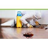 Henrys Cockroach Control Brisbane