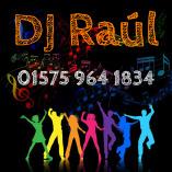 DJ Raul, Profi DJ und Alleinunterhalter