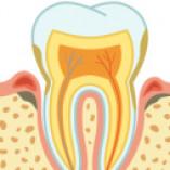 Zahnarzt Dr. Wolfgang Hiltscher