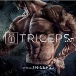 Triceps.at