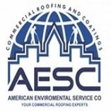 American Enviromental Service