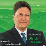 Ulrich Mehler