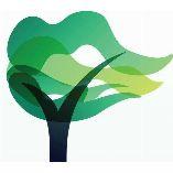 islandtreecare