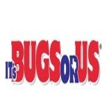 Its Bugs Or Us Bay City