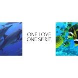 One Love One Spirit