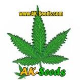AK-Seeds UGh