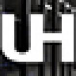 100% Uptime Hosting