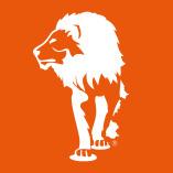 LionBST GmbH & Co. KG