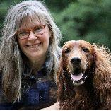 Canes sani - gesunde Hunde