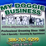 Cat-A-Holic Cats & My Doggie Business