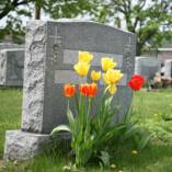 Scotts Chapel Hill Mortuary