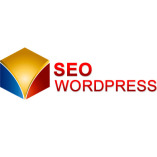 Seo Wordpress Agentur