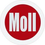 Autohaus Moll GmbH&CoKg