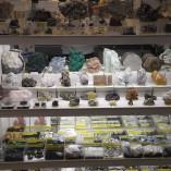 Fossilien Schmuck Mineralien Kunert