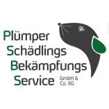 Plümper Schädlingsbekämpfungsservice GmbH &Co.KG
