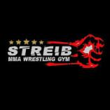 MMA-Wiesbaden