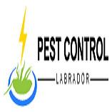 Pest Control Labrador