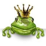 Küss den Frosch GmbH & Co. KG