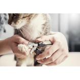 Muddy Paws Pet Salon