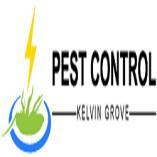 Pest Control Kelvin Grove