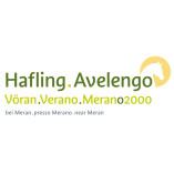 Ferienregion Hafling-Vöran-Meran 2000