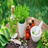 Herbal Supplements For Modern Era