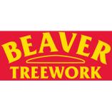 Beaver Treework