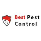 Best Pest Control BD