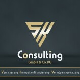 S&K Consulting GmbH & Co. KG logo