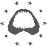 Startup Sharks